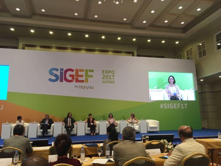 SIGEF 2017 - SDG panel