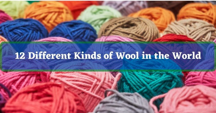 12 Different Kinds of Wool in the World