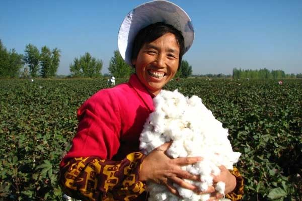 China Cotton