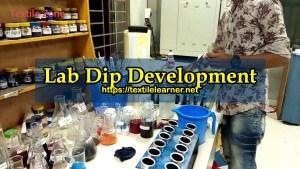 lab dip development
