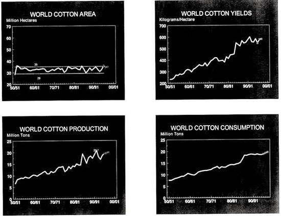 World cotton production report