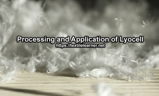 Processing of Lyocell
