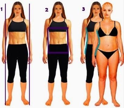 Body Shape for pattern engineering