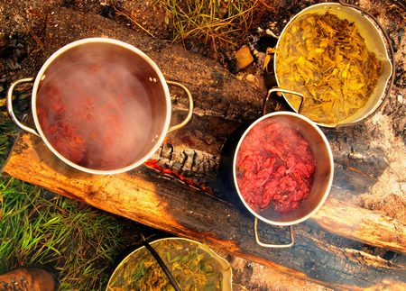 Natural Dyeing of Cotton Fabric