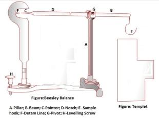 Beesleys Balance