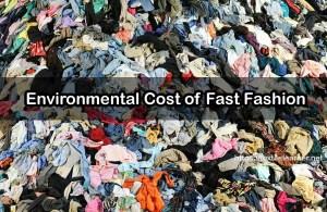 Environmental Cost of Fast Fashion