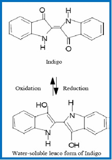 Chemical structure of indigo dye