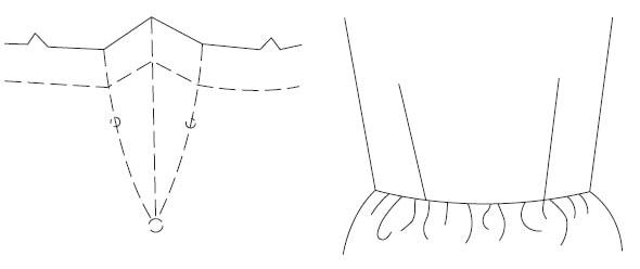 Curved outward dart