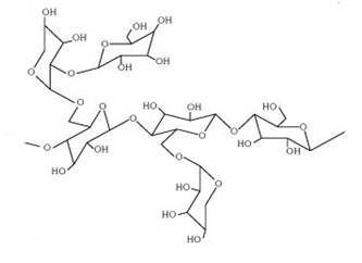 Structure of Tamarind which contains hydroxyl group