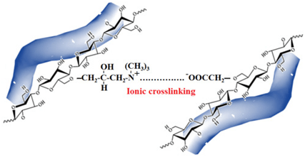 Ionic crosslinking between the molecules