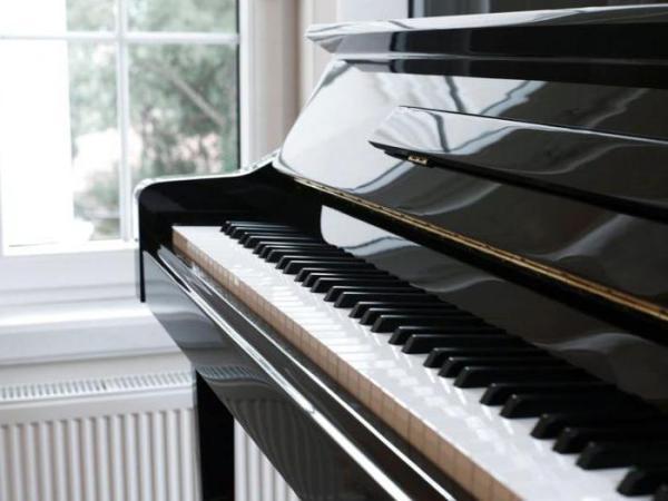Что такое рояльный лак?