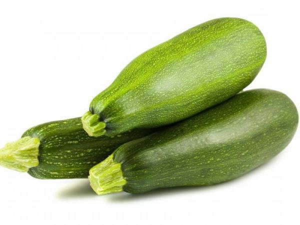 Сорта и виды кабачков: описание, характеристики, особенности выращивания