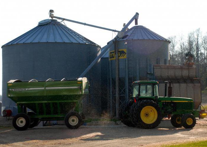 Уборка зерновых культур: способы, сроки и техника