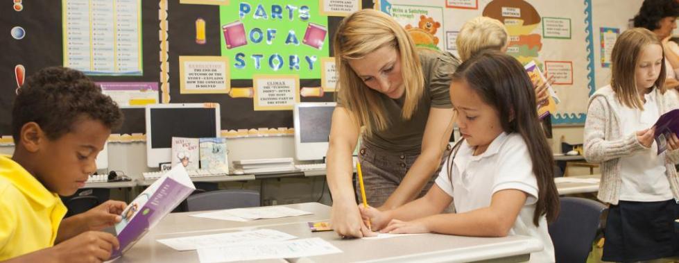 функции преподавателя по стандарту