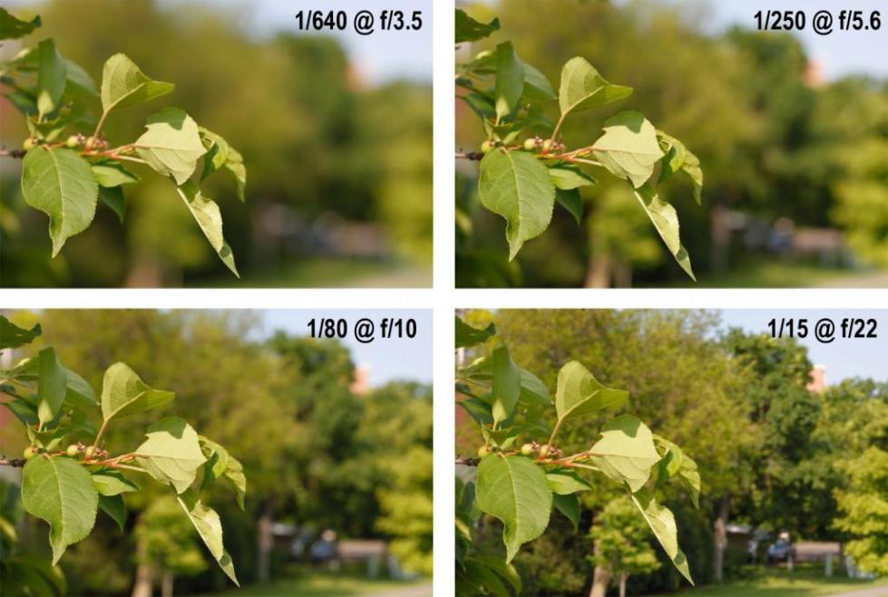 Глубина резкости в фотографии в зависимости от светосилы