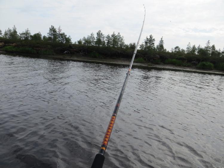 Рыбалка на реке Лая.