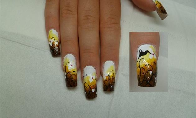 птичка колибри на ногтях