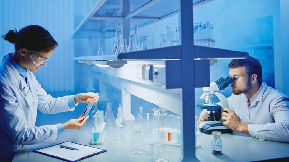 Лабораторные анализы