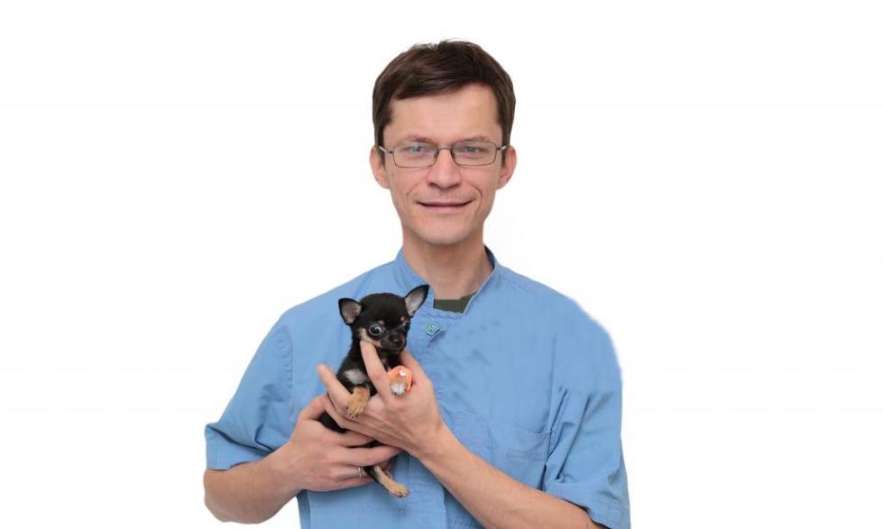 Ветеринар-невролог Сотников