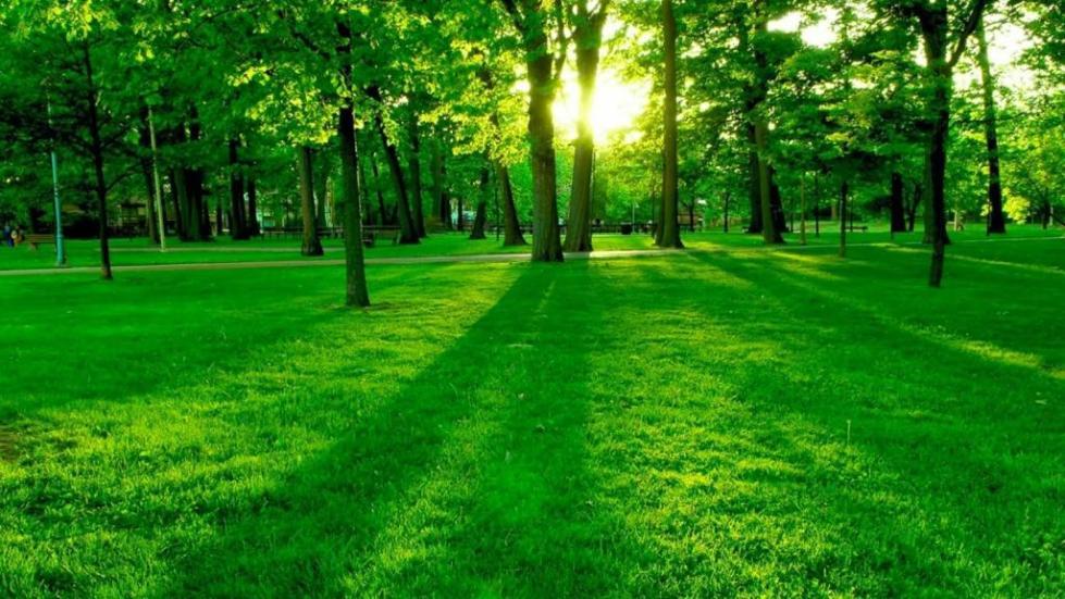 Защита экологии
