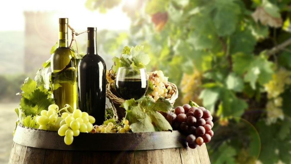 Виноделие на Сицилии