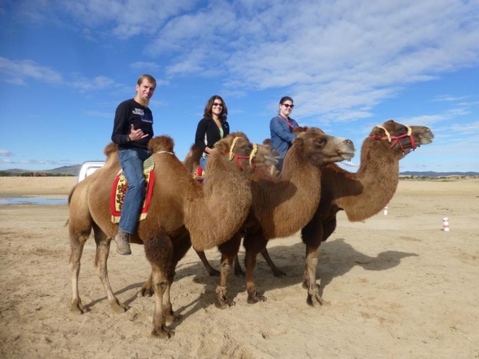 Туристы в Монголии