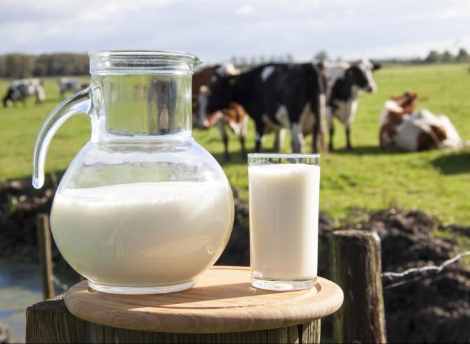 Прогорклое молоко