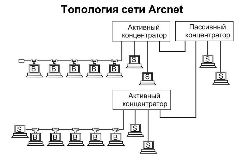 Структура локальной сети Arcnet