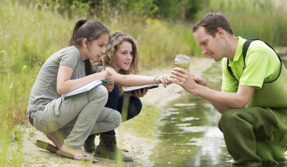 девочки изучают объект живого мира