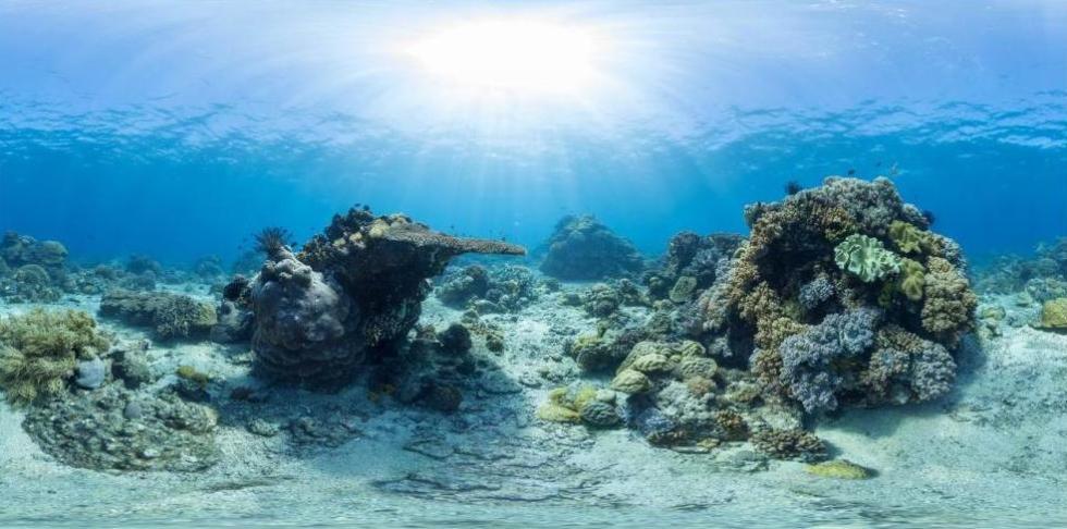 Подводные скалы у берегов Филиппин