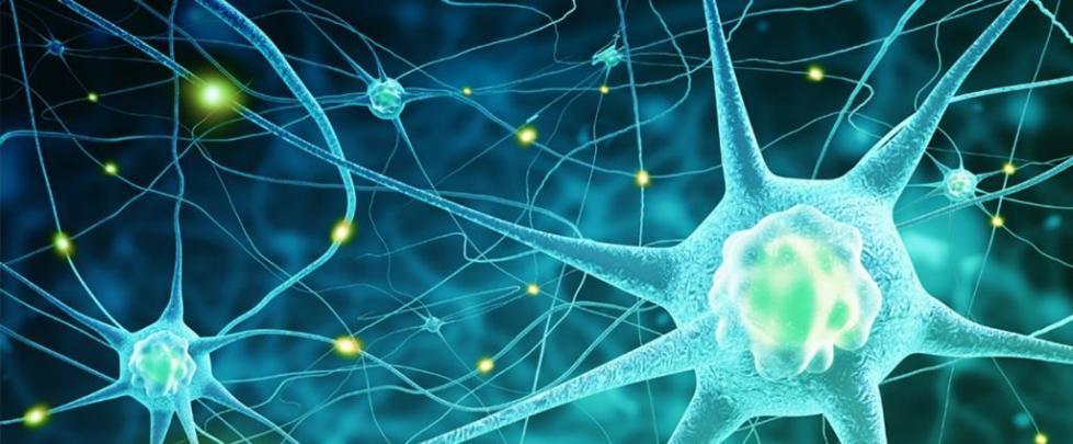 рак центральной нервной системы
