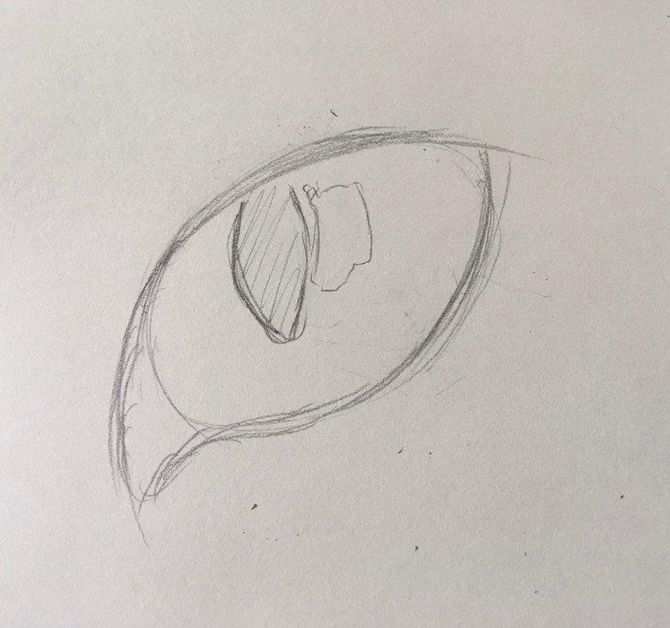 Набросок кошачьего глаза