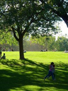 Sommer im Parc Jeanne-Mance, Montréal