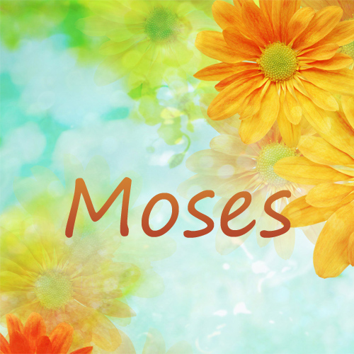 Image result for moses' names
