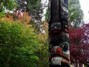 Bäume in Victoria, Kanada (M. Schäfer, Textrakt)