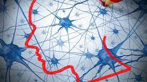 Posgrado en educación física y neurociencias