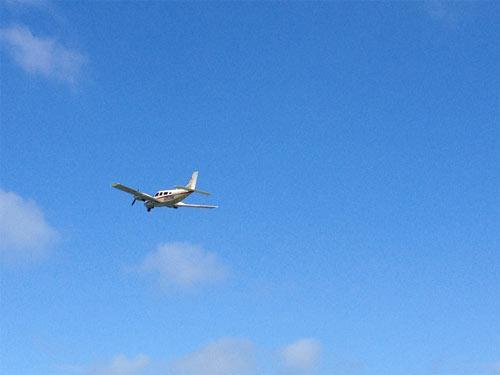 Kleiner Flieger über den Dünen von Helgoland
