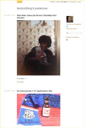 verkleinerter Screenshot meiner Posterous-Seite
