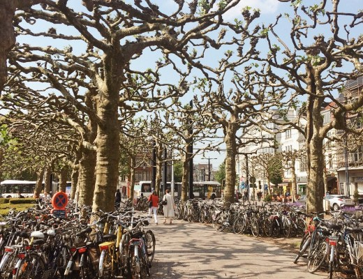 Gent, Belgium, bicycling in Europe, bicycling,