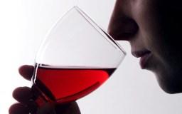 सेहत : रेड वाइन भी दिल की दोस्त नहीं
