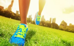 20 सूत्र से आप बन सकते है  स्वस्थ व दीर्घायु