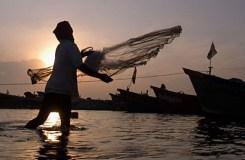 एमपी: 15 अगस्त तक मत्स्याखेट प्रतिबंधित