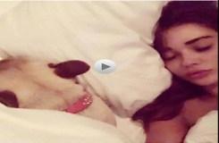 यह सेक्सी मॉडल अभिनेत्री बिस्तर में कुत्ते के साथ सोती है !