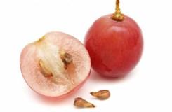 इस फल के बीज को खाने से ख़त्म हो जाएगा कैंसर