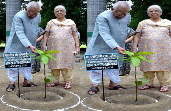 UP Governor Planting