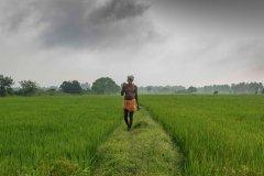 किसानों के लिए खुश खबर : अल-नीनो की चिंता नहीं, जमकर होगी बारिश
