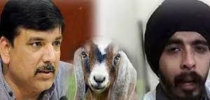 बकरी को राष्ट्रीय बहन घोषित करो- संजय सिंह
