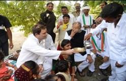 गुजरात में राहुल गांधी की 'चाय पर चर्चा'