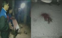 पुलिस, पशु तस्करों में मुठभेड़, गोलीबारी में एक मरा