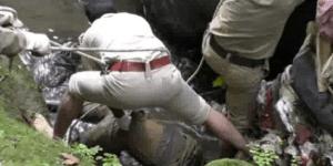 भोपाल: 9 साला मासूम की रेप के बाद हत्या, थाने में परिजन से बुलाया गुटखा और पानी, 6 सस्पेंड